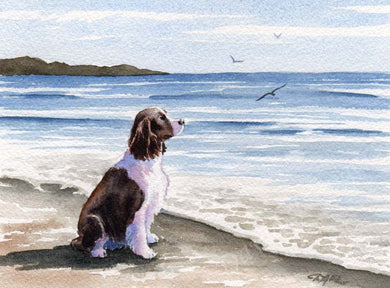 A Springer Spaniel beach print based on a David J Rogers original watercolor