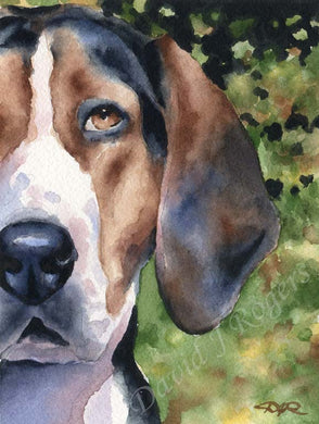 A Treeing Walker Coonhound portrait print based on a David J Rogers original watercolor