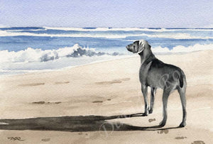 A Weimaraner beach print based on a David J Rogers original watercolor
