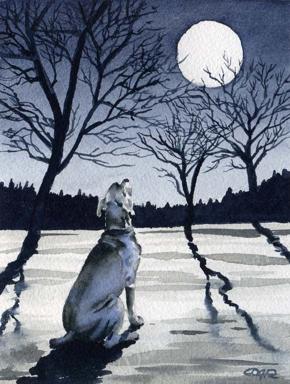 A Weimaraner other print based on a David J Rogers original watercolor