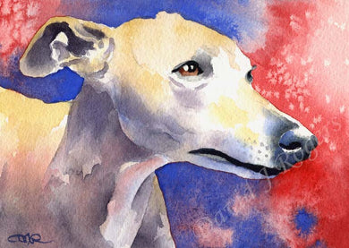 A Whippet portrait print based on a David J Rogers original watercolor