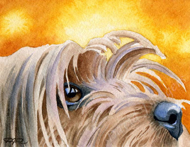 A Yorkshire Terrier portrait print based on a David J Rogers original watercolor