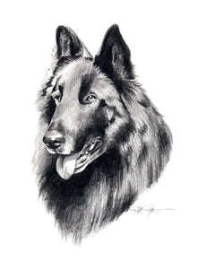 Belgian Sheepdog Dog Wall Art Print Poster Picture Painting Room Decor