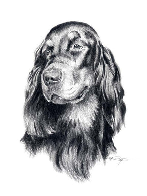 A Gordon Setter 0 print based on a David J Rogers original watercolor