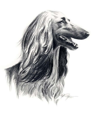 Afghan Hound Dog Wall Art Print Poster Picture Painting Bedroom Room