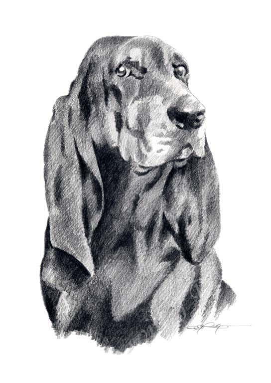 Black Tan Coonhound Dog Wall Art Print Poster Picture Painting Decor
