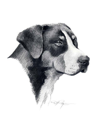 A Greater Swiss Mountain Dog portrait print based on a David J Rogers original watercolor