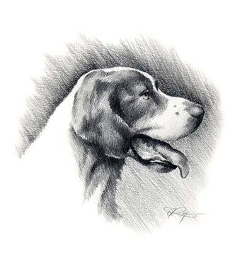 A Irish Setter portrait print based on a David J Rogers original watercolor