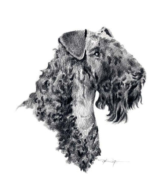 A Kerry Blue Terrier portrait print based on a David J Rogers original watercolor