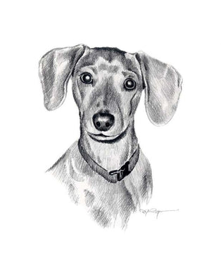 A Miniature Dachshund portrait print based on a David J Rogers original watercolor