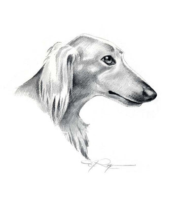 A Saluki 0 print based on a David J Rogers original watercolor