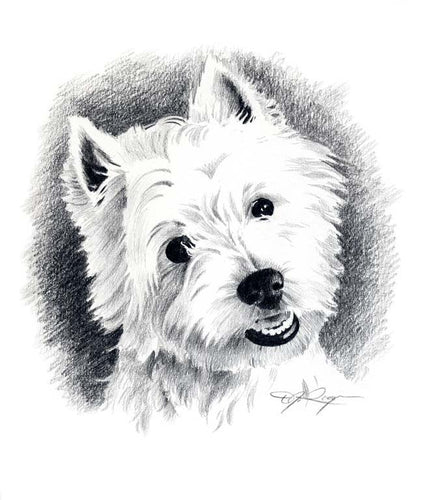 A West Highland Terrier 0 print based on a David J Rogers original watercolor