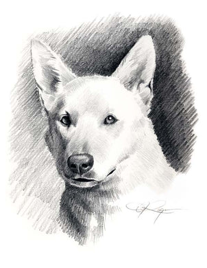 A White German Shepherd 0 print based on a David J Rogers original watercolor