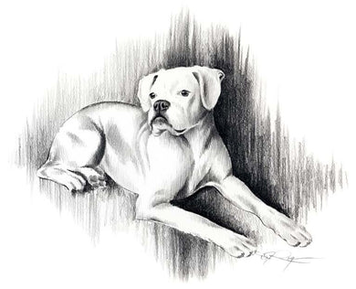 A White Boxer 0 print based on a David J Rogers original watercolor