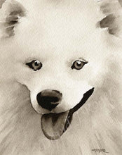 Load image into Gallery viewer, A American Eskimo portrait print based on a David J Rogers original watercolor