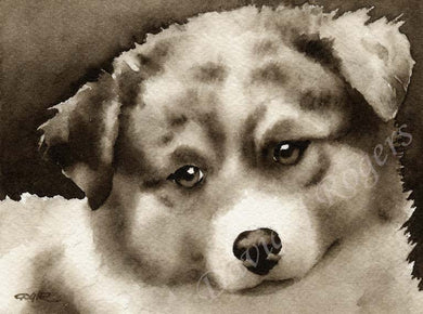 Australian Shepherd Dog Wall Art Print Poster Picture Painting Decor