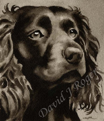 Boykin Spaniel Dog Wall Art Print Poster Picture Painting Room Decor