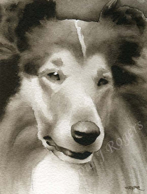 A Collie portrait print based on a David J Rogers original watercolor