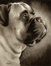 Load image into Gallery viewer, A Engilsh Mastiff portrait print based on a David J Rogers original watercolor