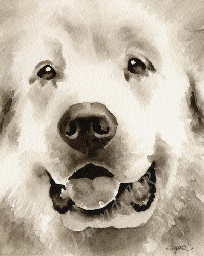 A Great Pyrenees portrait print based on a David J Rogers original watercolor