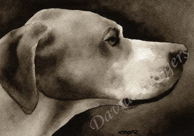 A Pointer portrait print based on a David J Rogers original watercolor