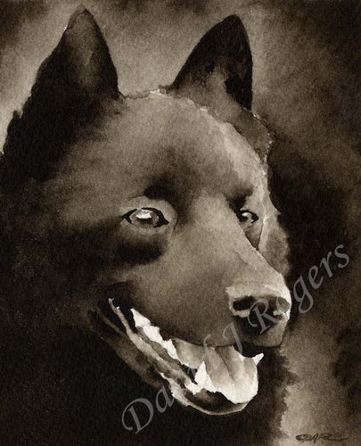 A Schipperke portrait print based on a David J Rogers original watercolor