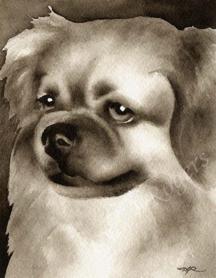 A Tibetan Spaniel portrait print based on a David J Rogers original watercolor