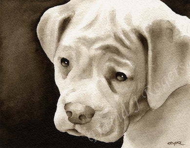 A White Boxer portrait print based on a David J Rogers original watercolor