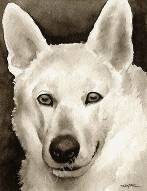A White German Shepherd portrait print based on a David J Rogers original watercolor