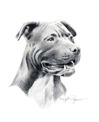 American Pit Bull Terrier Dog Wall Art Print Poster Picture Painting