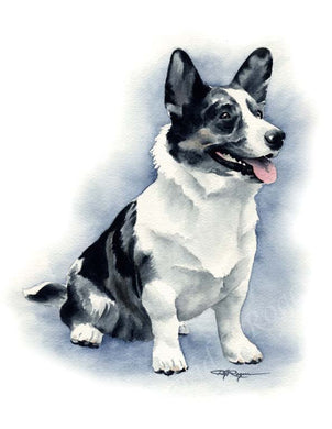 A Cardigan Blue Merle Corgi portrait print based on a David J Rogers original watercolor
