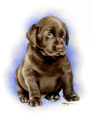 A Chocolate Lab portrait print based on a David J Rogers original watercolor