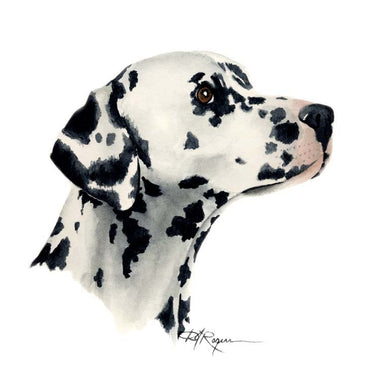 A Dalmatian portrait print based on a David J Rogers original watercolor