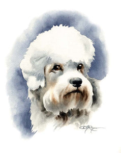 A Dandie Dinmont portrait print based on a David J Rogers original watercolor