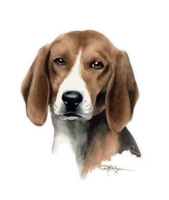 A English Foxhound portrait print based on a David J Rogers original watercolor