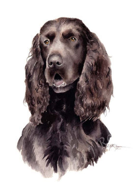 A Field Spaniel portrait print based on a David J Rogers original watercolor