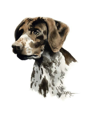A German Short Haired Pointer portrait print based on a David J Rogers original watercolor