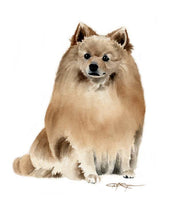 Load image into Gallery viewer, A German Spitz portrait print based on a David J Rogers original watercolor