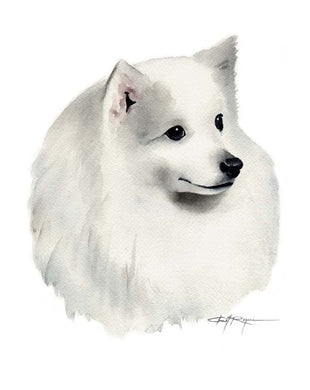 A Japanese Spitz portrait print based on a David J Rogers original watercolor