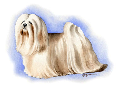 A Lhasa Apso 0 print based on a David J Rogers original watercolor