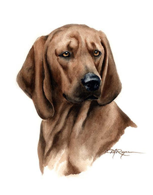 A Redbone Coonhound portrait print based on a David J Rogers original watercolor