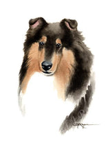 Load image into Gallery viewer, A Shetland Sheepdog 0 print based on a David J Rogers original watercolor