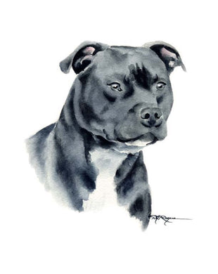 A Staffordshire Terrier 0 print based on a David J Rogers original watercolor