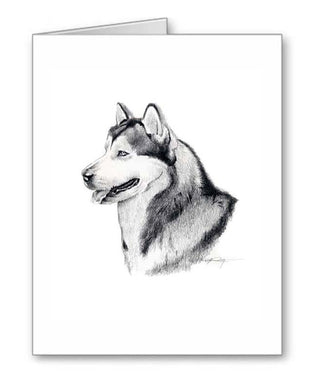 A Alaskan Malamute portrait print based on a David J Rogers original watercolor