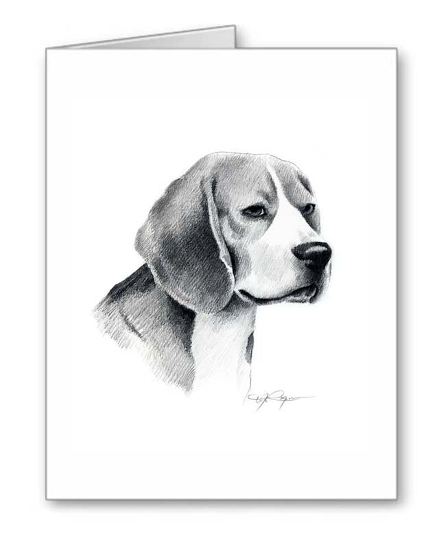 A Beagle portrait print based on a David J Rogers original watercolor