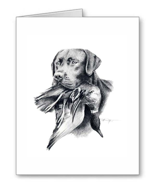 A Black Labrador portrait print based on a David J Rogers original watercolor
