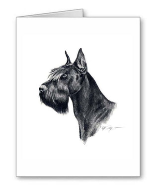 A Giant Schnauzer portrait print based on a David J Rogers original watercolor