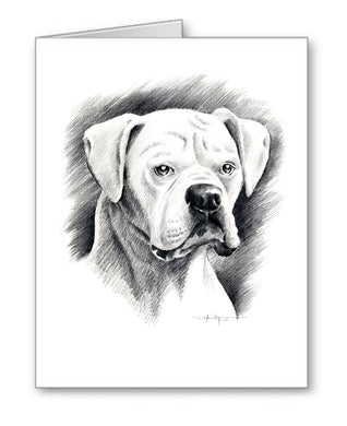 White Boxer Pencil Note Card Art by Artist DJ Rogers