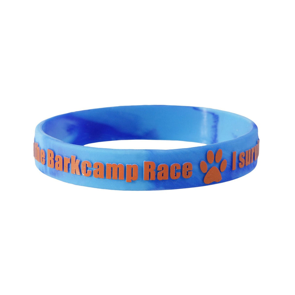 Embossed Colour Silicone Wristbands