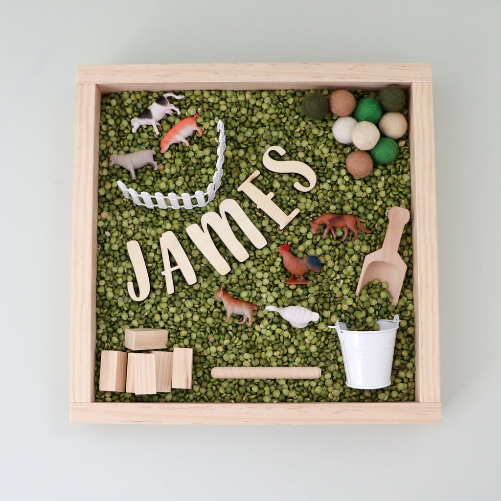 Farm themed sensory kit